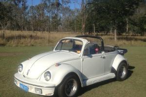 VW Beetle Convertible Carrara KIT Semi Auto 1972 in Rosewood, QLD