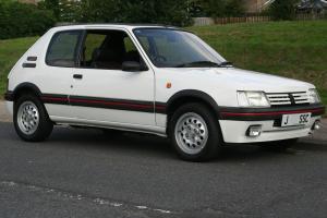 1991 Peugeot 205 GTi 1.6 Photo