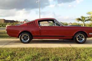 1965 Mustang Fastback Shelby GT350 Tribute