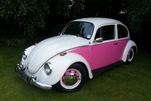 "VW Beetle 1972 ""Tax Exempt"""