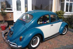 1966 Volkswagen Beetle 1300 Photo