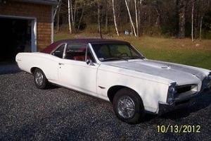 1966 Pontiac GTO Posted Coupe, Original Florida Car, Every Day Driver!