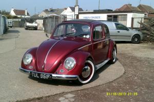 BEAUTIFUL 67 BEETLE Photo