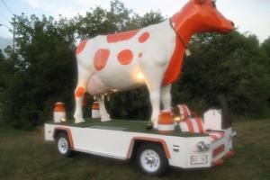 Other Makes cow