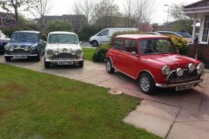 3 x Classic Mini (Red + White + Blue) Italian Job - Fun or Business or Collector Photo