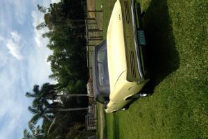 1966 Pontiac GTO Clone (Tempest)