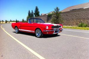 1966 65 FORD MUSTANG CONVERTIBLE 302 V8! SHELBY G.T 350! POWER TOP! RESTORED!