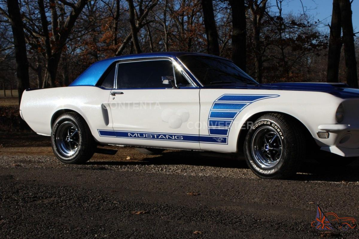 Ford : Mustang Shelby GT 500 GT/CS EXP 500 64 65 66 67 68 ...
