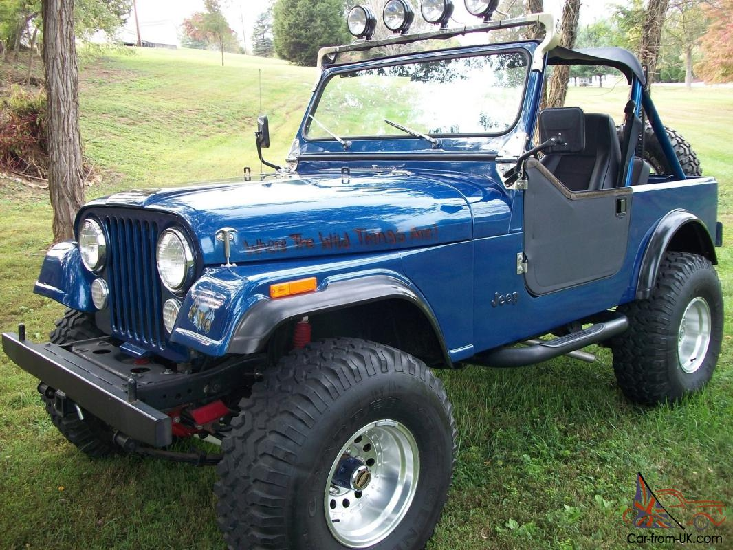 1983 Jeep Cj7 Wiring Harness Opinions About Diagram 1979 Cj5 4x4 Custom Build Frame Off Restoration Painless