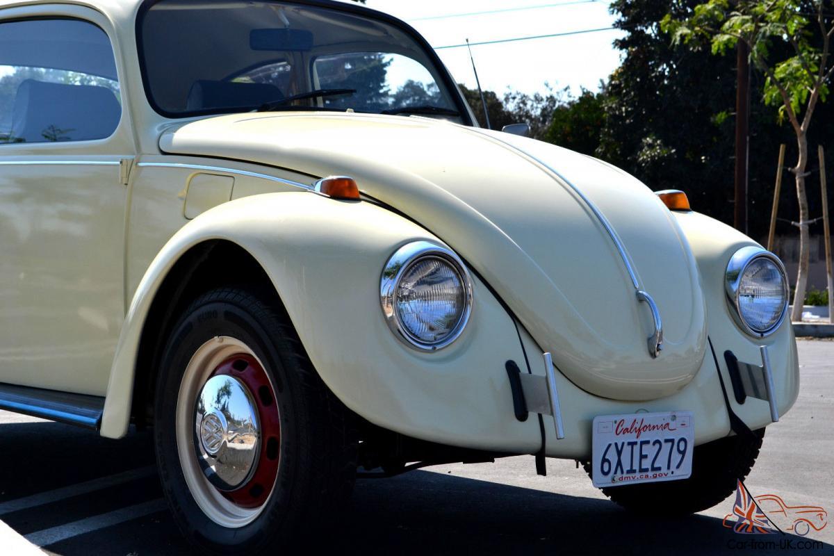 Beautifully Restored Cream White Classic Volkswagen Bug